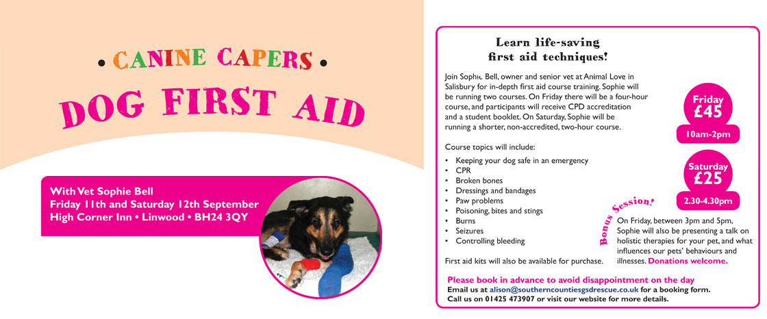 Canine_capers_website_banners_first_aid