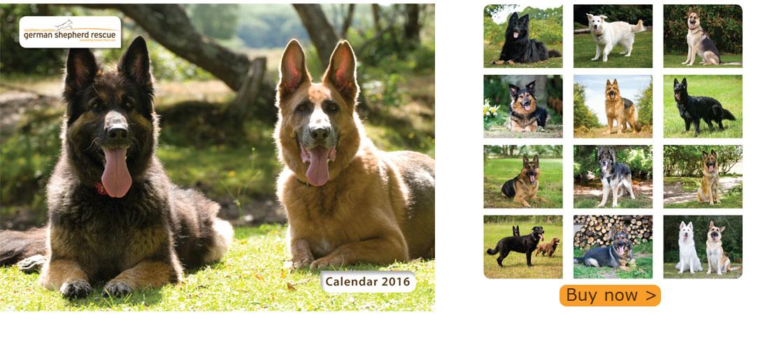 calendar_2016_banner3